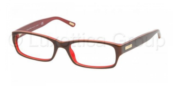 RALPH RA7018 » BROWN/YELLOW/RED